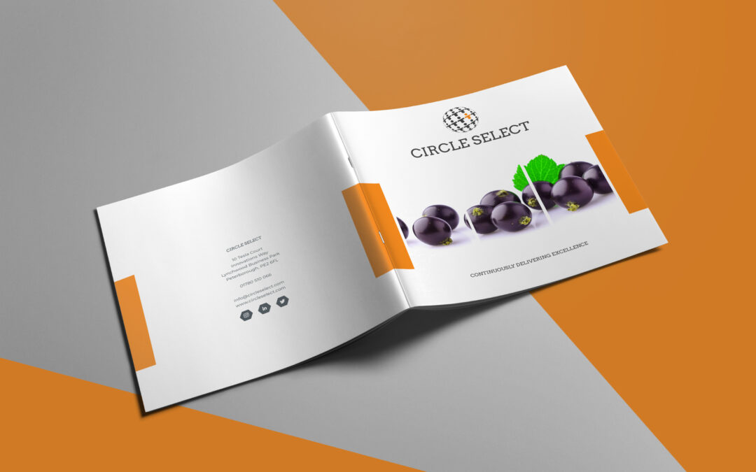 Brochure Design for Peterborough Recruitment Agency   Nerve