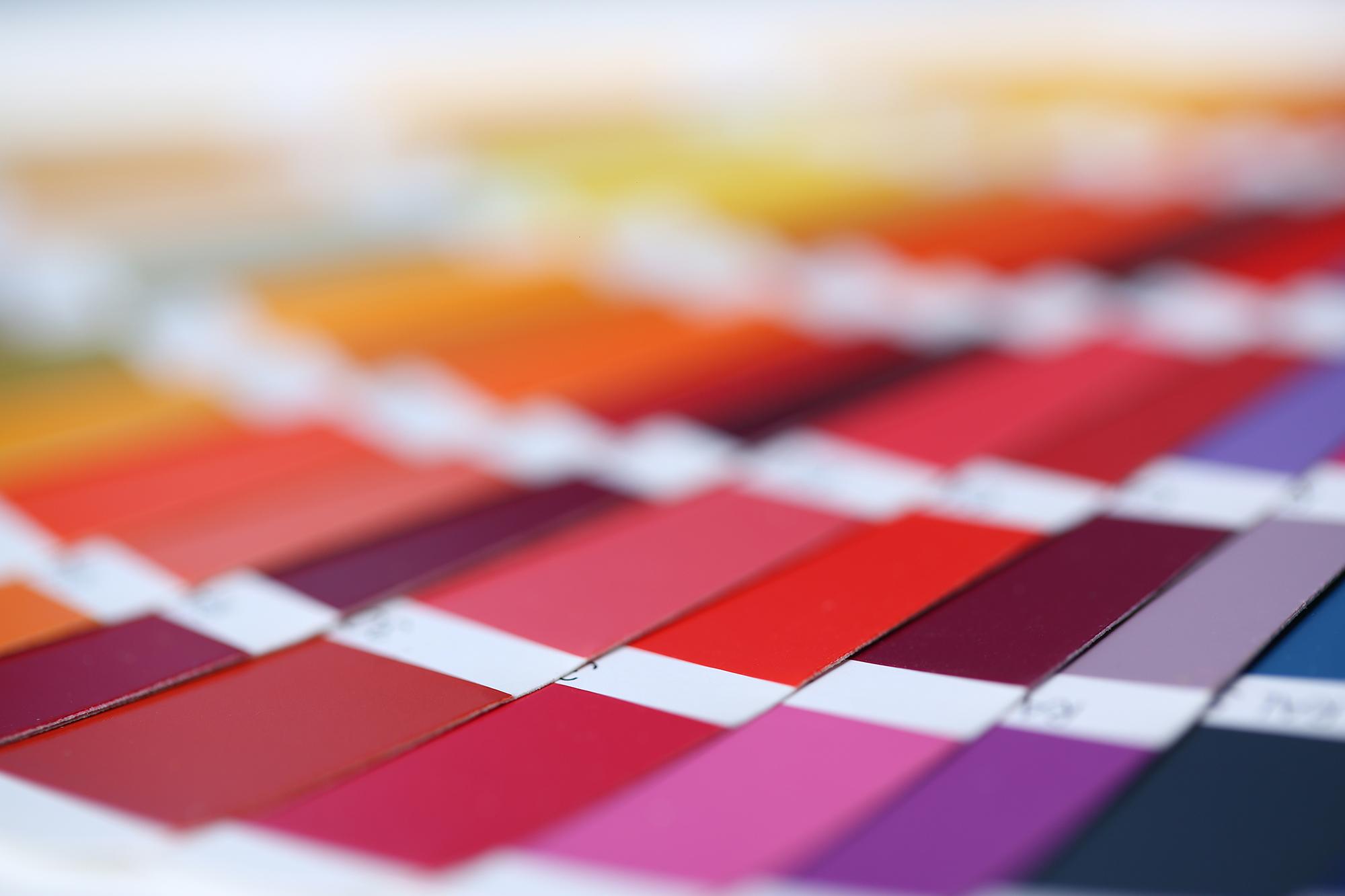 Choosing a colour palette | Nerve Design | Logo Design Northampton